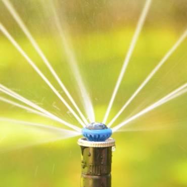 Unterflur-Bewässerung